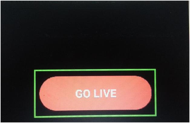 Hit the GO LIVE option.